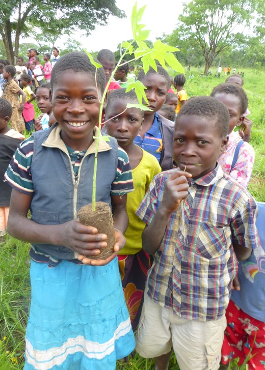 4.-Zambia-Forest-Protection-School-orchard.jpg